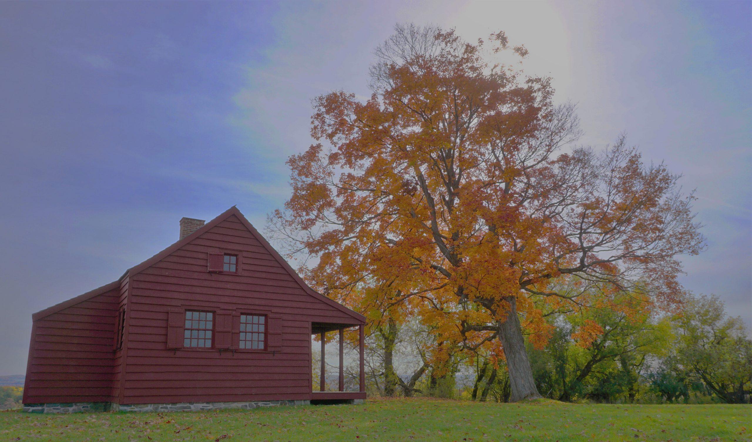 Fall scenery NH
